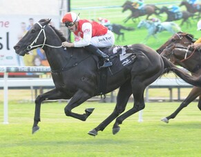 Fifth stakes win for Kuro