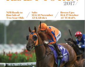 NZB Ready To Run Sale -PEDIGREE UPDATES