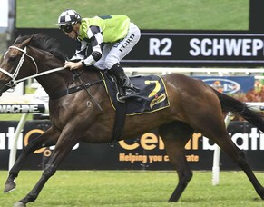 Waller delays Unforgotten decision